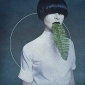 Cory Arcane by Kangding Ray