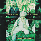 Cause and Effect by Larry Coryell