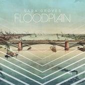 Floodplain de Sara Groves