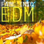 Fall Into EDM - EP von Various Artists
