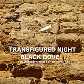 Black Dove: a collection of rarities & other stuff by Transfigured Night