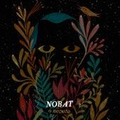 O Novato by Nobat