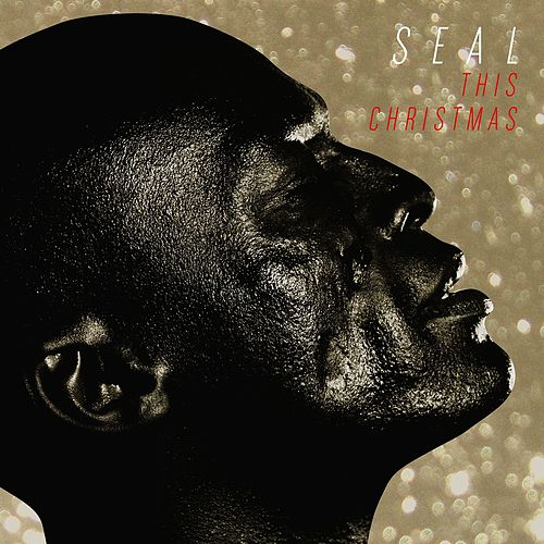 This Christmas by Seal