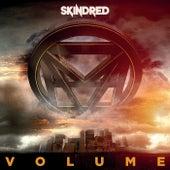 Volume von Skindred