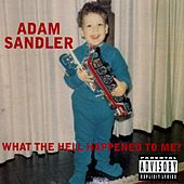 What The Hell Happened To Me? von Adam Sandler