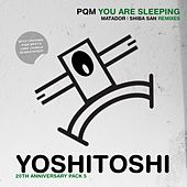 You Are Sleeping (Remixes) von Deep Dish