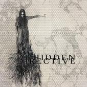 Directive by DJ Hidden