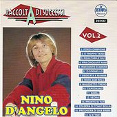 Raccolta di successi, vol. 2 (The Best of Nino D'Angelo Collection) by Nino D'Angelo