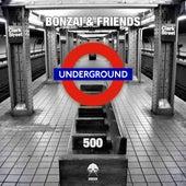 Bonzai & Friends 500 de Various Artists