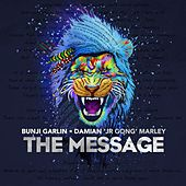 The Message (feat. Damian Marley) by Bunji Garlin