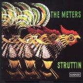 Struttin' de The Meters