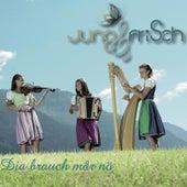 Dia Brauch Mar No by Jung