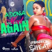 Meet Again - Single by Aidonia