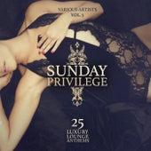 Sunday Privilege, Vol. 5 (25 Luxury Lounge Anthems) de Various Artists