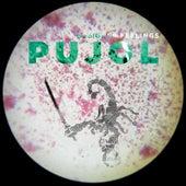 Designer Feelings by Pujol