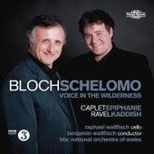 Bloch: Schelomo by Raphael Wallfisch