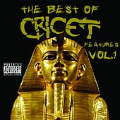 The Best of Cricet Features, Vol. 1 von Cricet