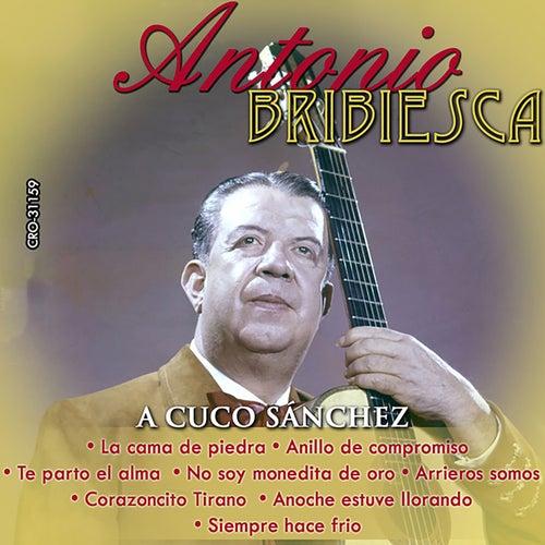 Antonio Bribiesca Interpreta a Cuco Sanchez by Antonio Bribiesca