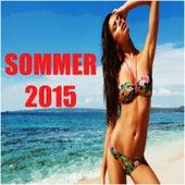 Sommer 2015: Die Großen Erfolge by Various Artists