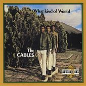 What Kind Of World by The Cables