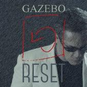 Reset by Gazebo