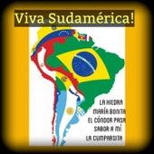 Viva Sudamérica! by Various Artists