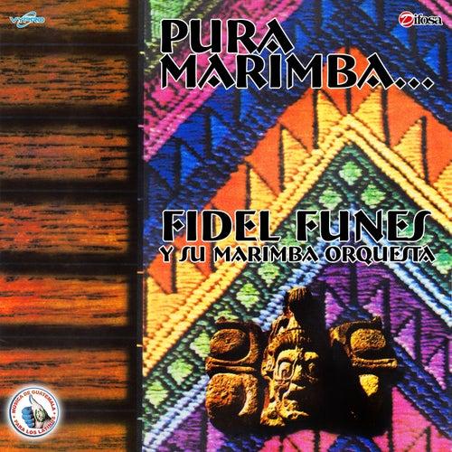Pura Marimba. Música de Guatemala para los Latinos by Fidel Funes