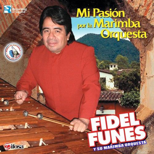 Mi Pasión por la Marimba Orquesta. Música de Guatemala para los Latinos by Fidel Funes