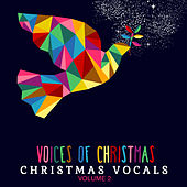 Christmas Vocals: Voices of Christmas, Vol. 2 by Various Artists