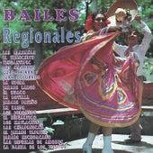 Bailes Regionales de Mariachi Nuevo Tecalitlan
