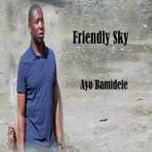Friendly Sky von Ayo Bamidele