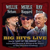 Willie, Merle & Ray: Big Hits Live From The Last Of The Breed Tour by Various Artists