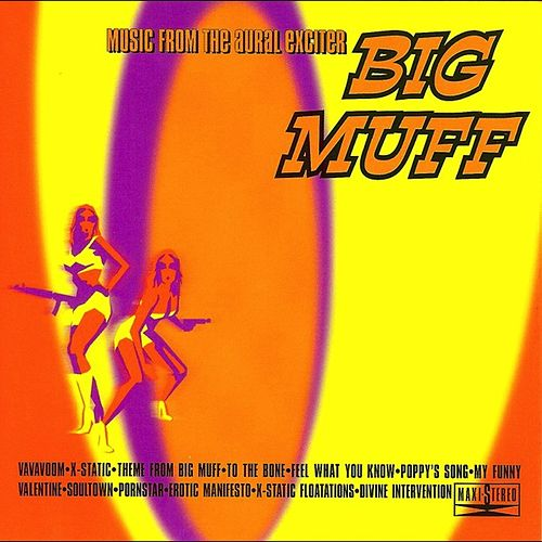 Music From The Aural Exciter by Big Muff
