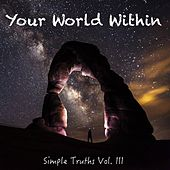 Simple Truths, Vol. 3 de Your World Within