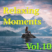 Relaxing Moments, Vol. 10 by Various Artists
