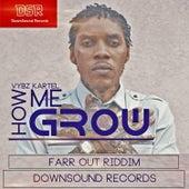 How Me Grow by VYBZ Kartel