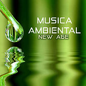 Musica Ambiental New Age - Canciones Instrumentales para Dormir de Various Artists