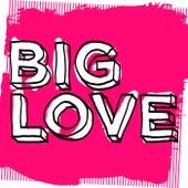 Big Love Latin Love (Mixed by Seamus Haji) - EP by Various Artists