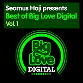 Seamus Haji presents Best of Big Love Digital, Vol. 1 - EP de Various Artists