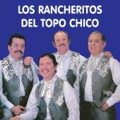 Éxitos by Los Rancheritos Del Topo Chico