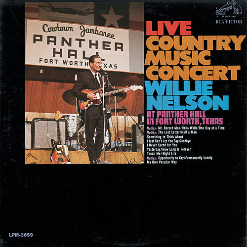 Live Country Music Concert by Willie Nelson