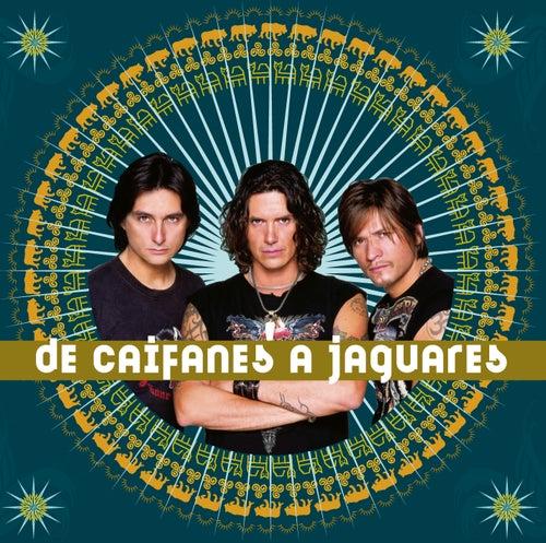 De Caifanes A Jaguares by Various Artists