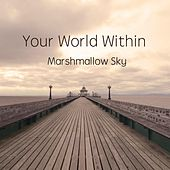 Marshmallow Sky de Your World Within