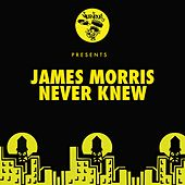 Never Knew by James Morris
