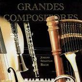 Grandes Compositores, Johann Sebastian Bach by Various Artists