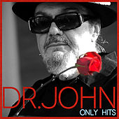Only Hits de Dr. John