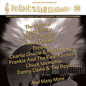 De Rock 'N Roll Methode, Vol. 30 by Various Artists
