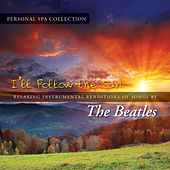 I'll Follow the Sun (Relaxing Instrumental Renditions of Songs by the Beatles) by Judson Mancebo