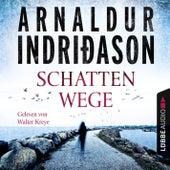Schattenwege - Island Krimi von Arnaldur Indriðason