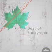 Best of Funkyroom by Various Artists